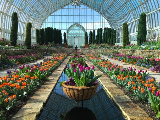 Video Tour The 2020 Spring Flower Show